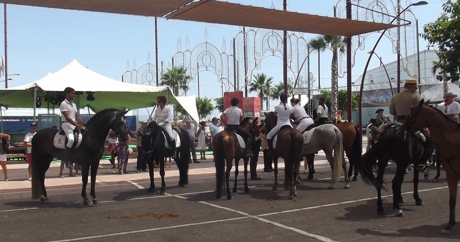 caballos-1